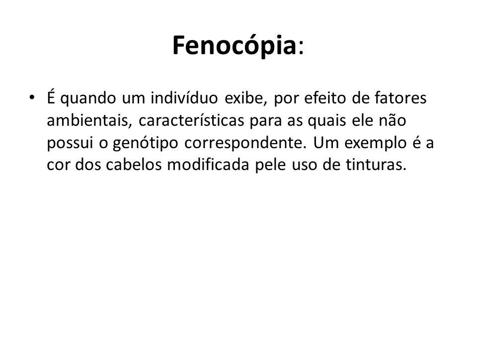 Fenocópia:
