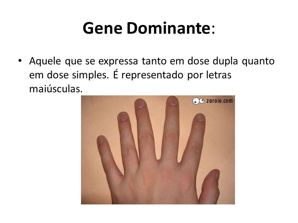Gene Dominante: Aquele que se expressa tanto em dose dupla quanto em dose simples.