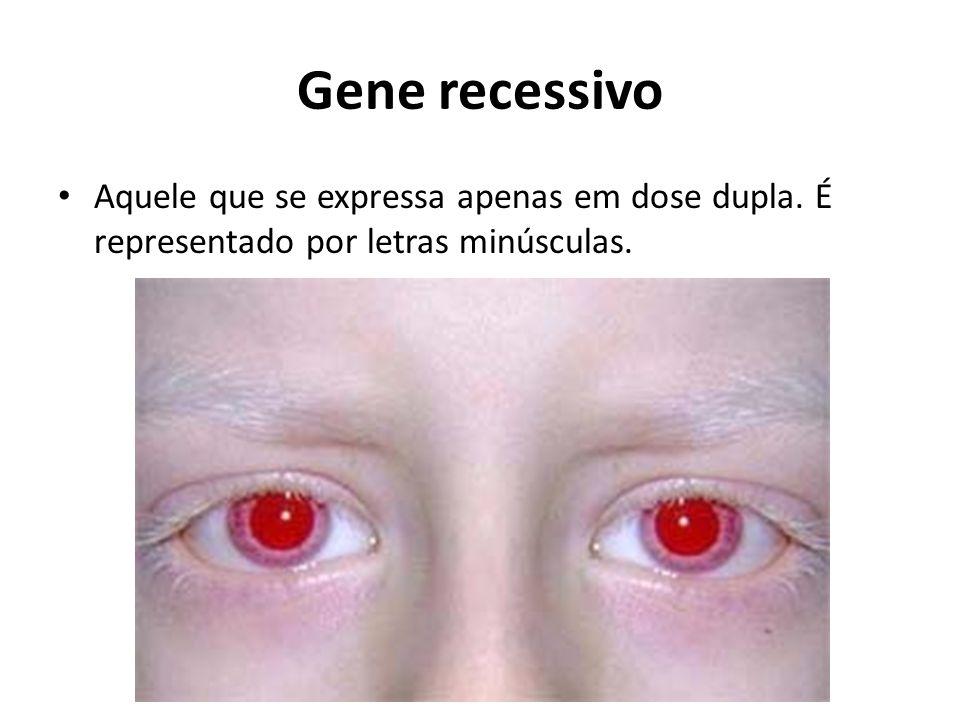 Gene recessivo Aquele que se expressa apenas em dose dupla. É representado por letras minúsculas.