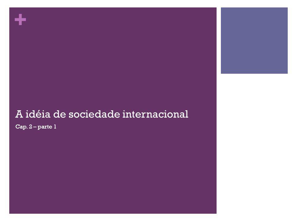 A idéia de sociedade internacional