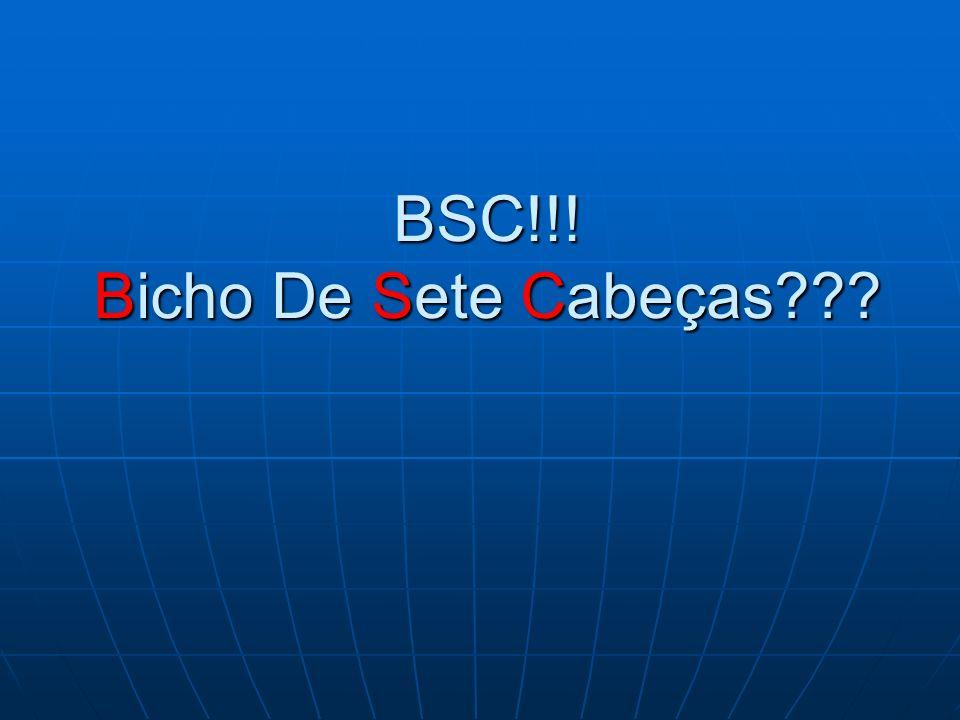 BSC!!! Bicho De Sete Cabeças
