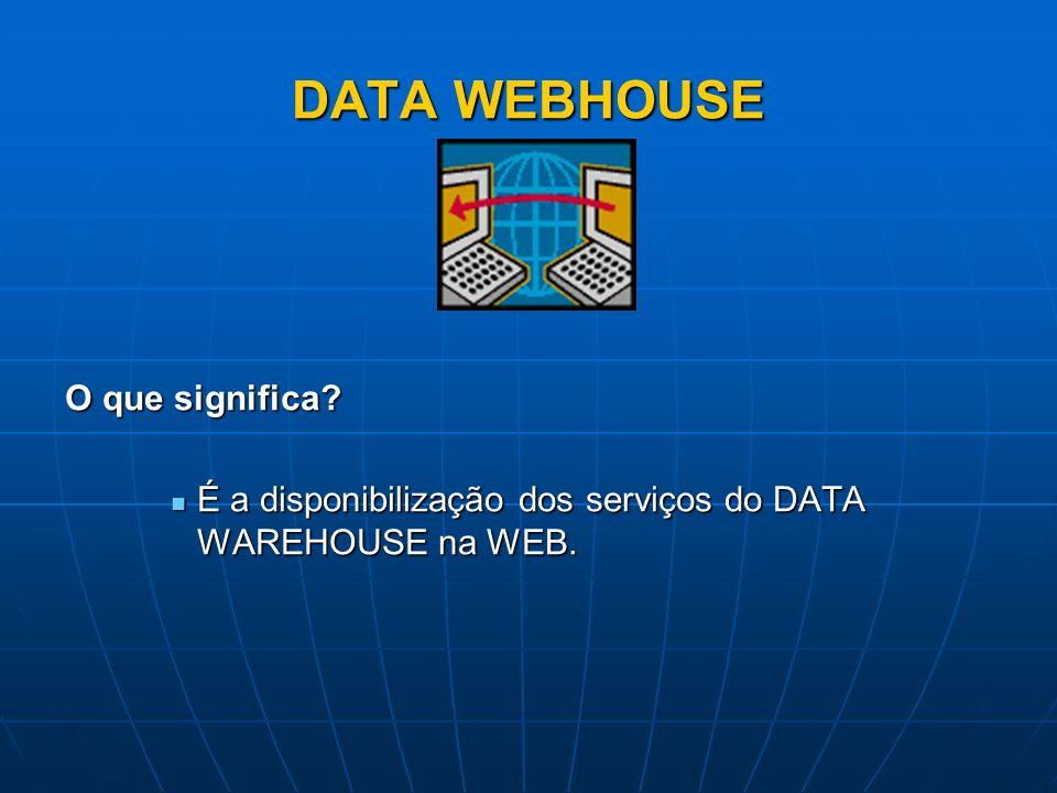 DATA WEBHOUSE O que significa