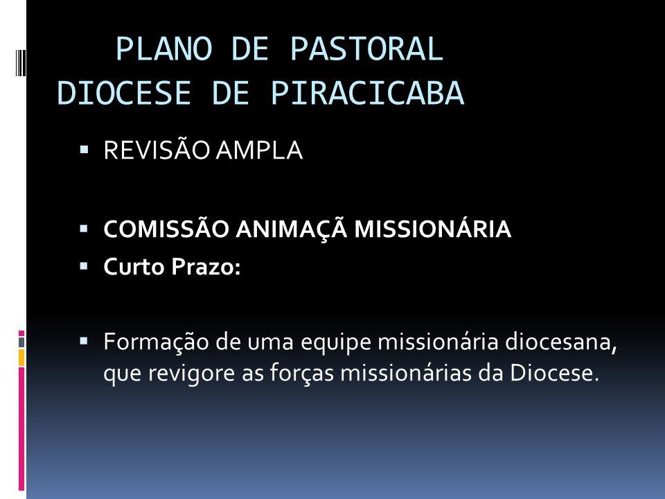 PLANO DE PASTORAL DIOCESE DE PIRACICABA