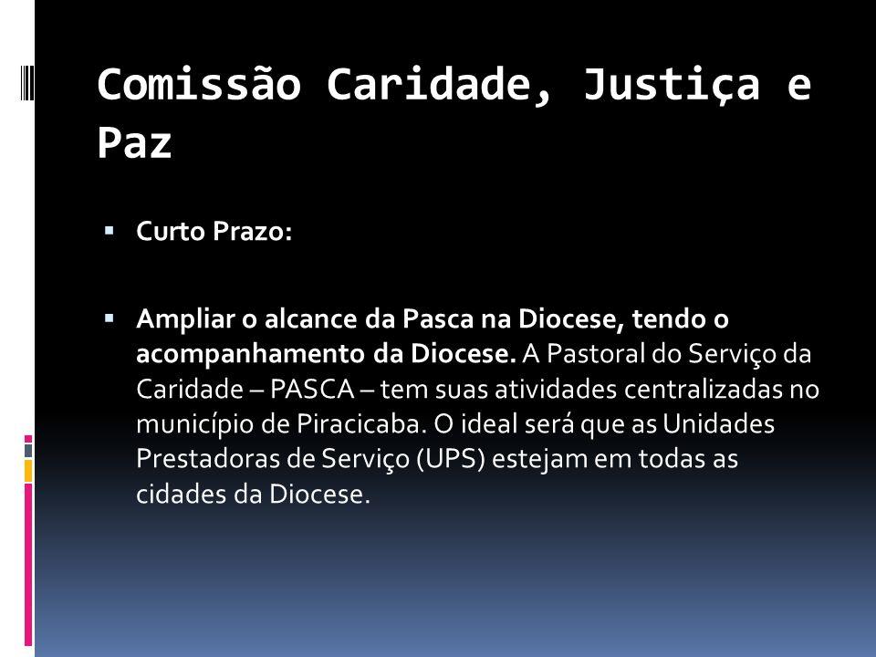 Comissão Caridade, Justiça e Paz