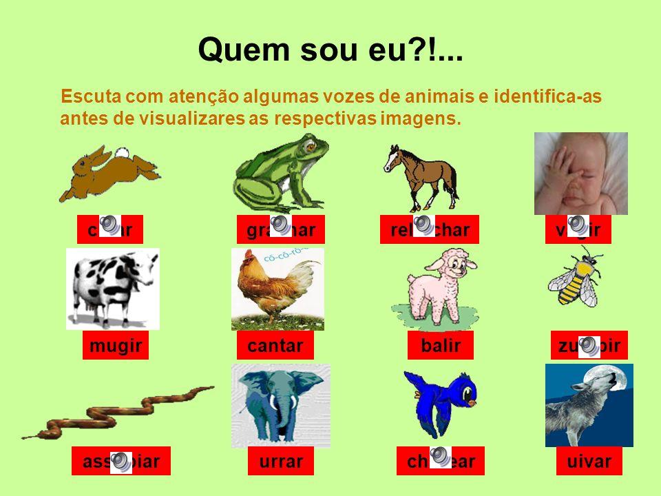Quem sou eu !... Escuta com atenção algumas vozes de animais e identifica-as antes de visualizares as respectivas imagens.