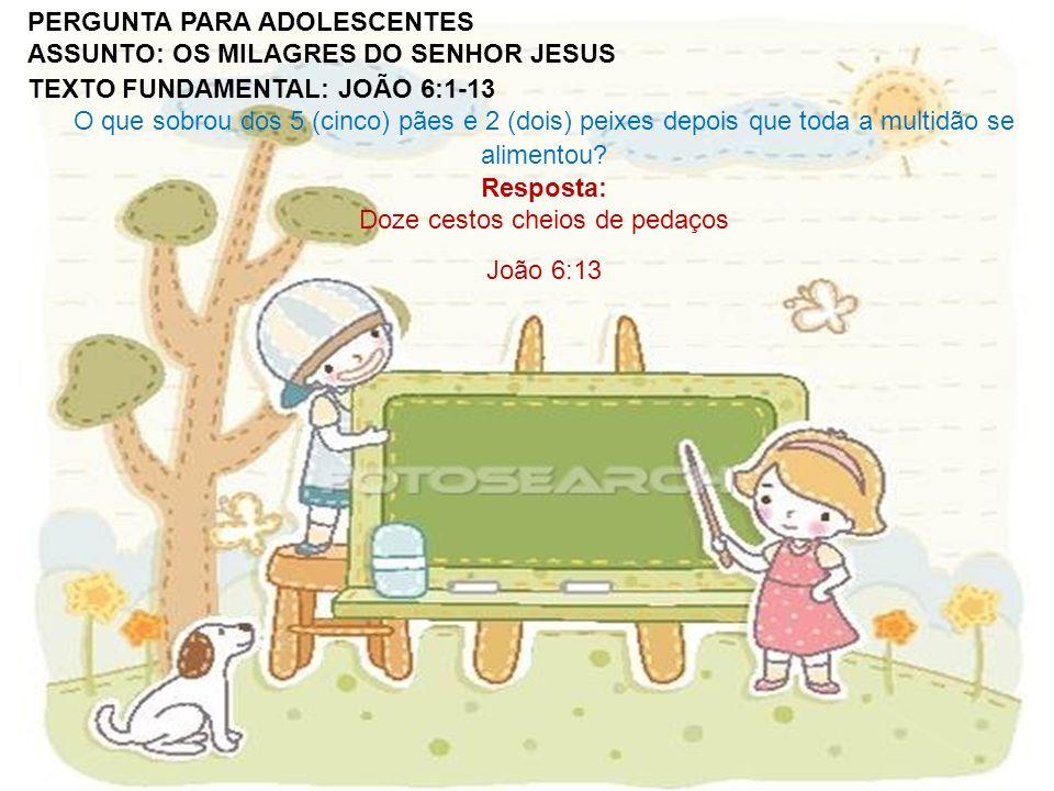 Resposta: Doze cestos cheios de pedaços João 6:13