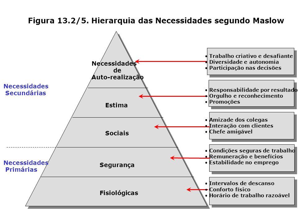 Figura 13.2/5. Hierarquia das Necessidades segundo Maslow