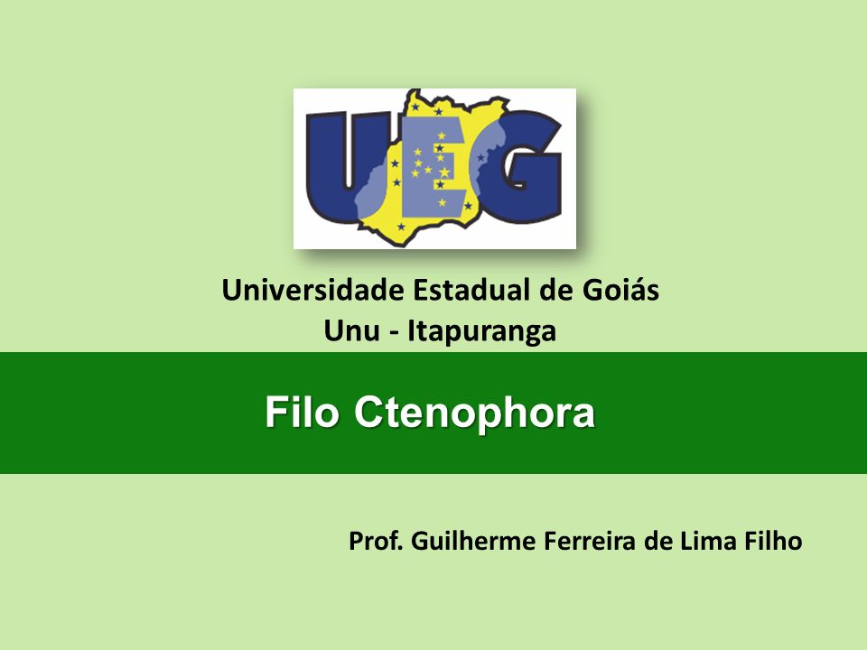 Universidade Estadual de Goiás Prof. Guilherme Ferreira de Lima Filho