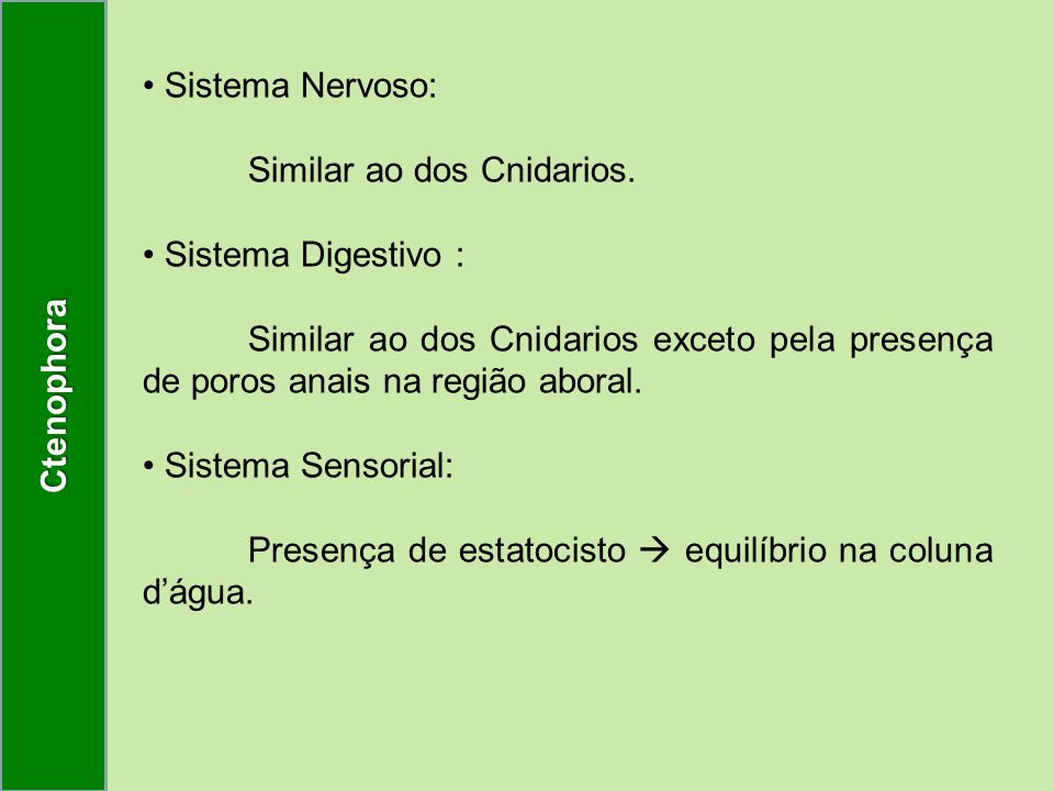 Ctenophora Sistema Nervoso: Similar ao dos Cnidarios. Sistema Digestivo :