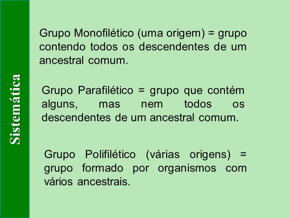 Sistemática Grupo Monofilético (uma origem) = grupo contendo todos os descendentes de um ancestral comum.