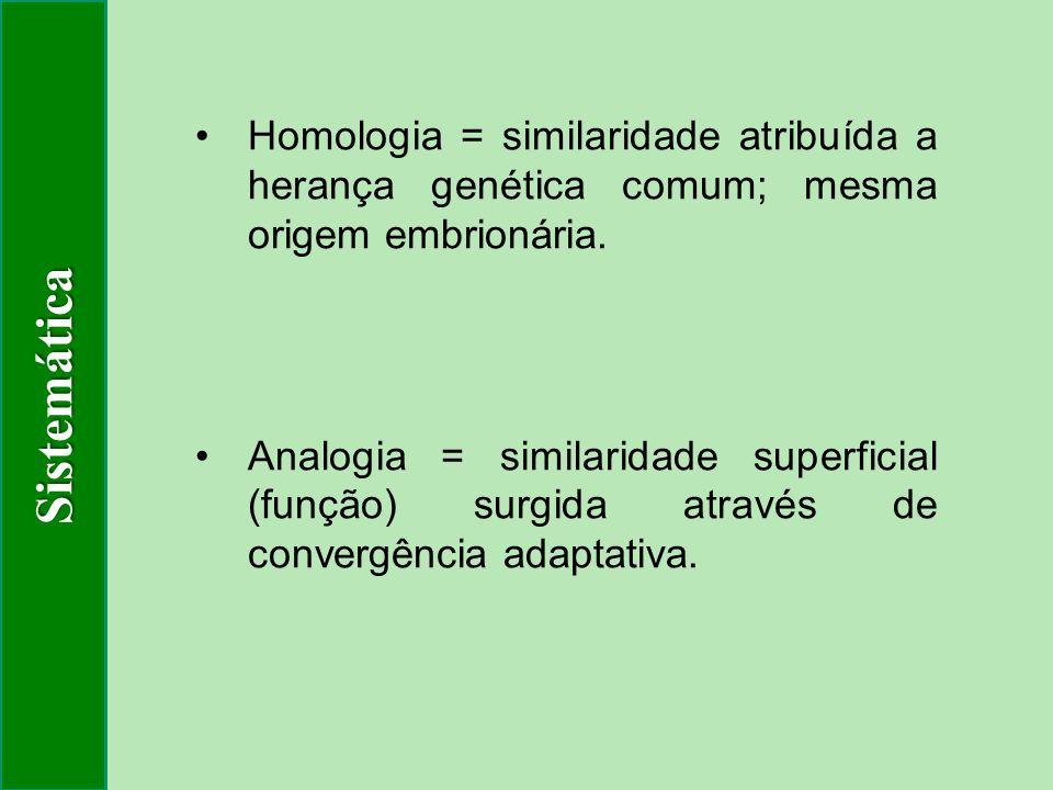 Sistemática Homologia = similaridade atribuída a herança genética comum; mesma origem embrionária.