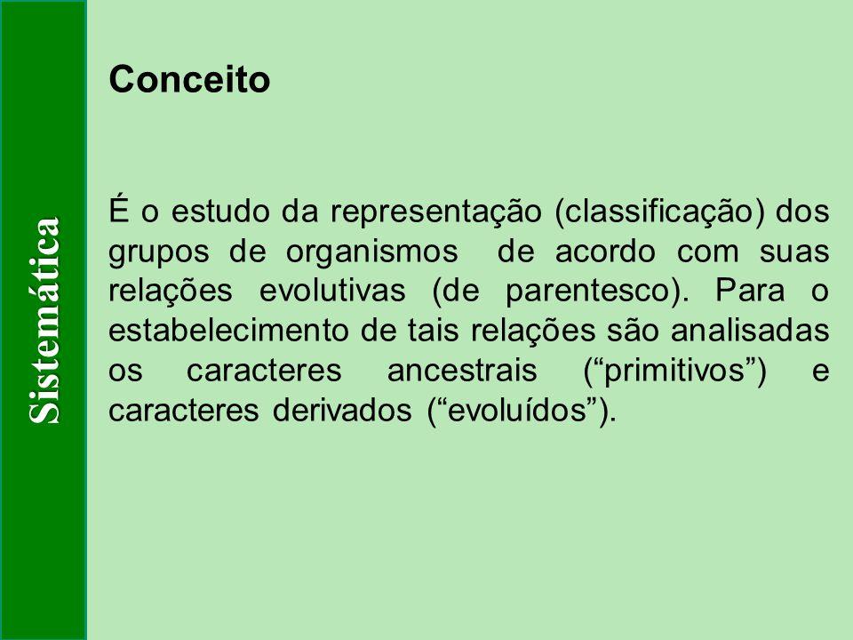 Sistemática Conceito.