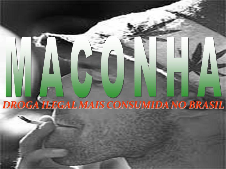 DROGA ILEGAL MAIS CONSUMIDA NO BRASIL