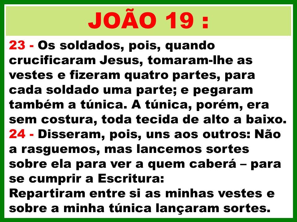 JOÃO 19 :