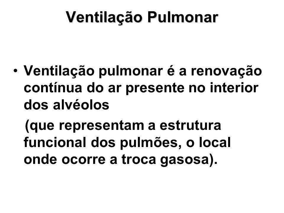 Ventilação Pulmonar Ventilação pulmonar é a renovação contínua do ar presente no interior dos alvéolos.