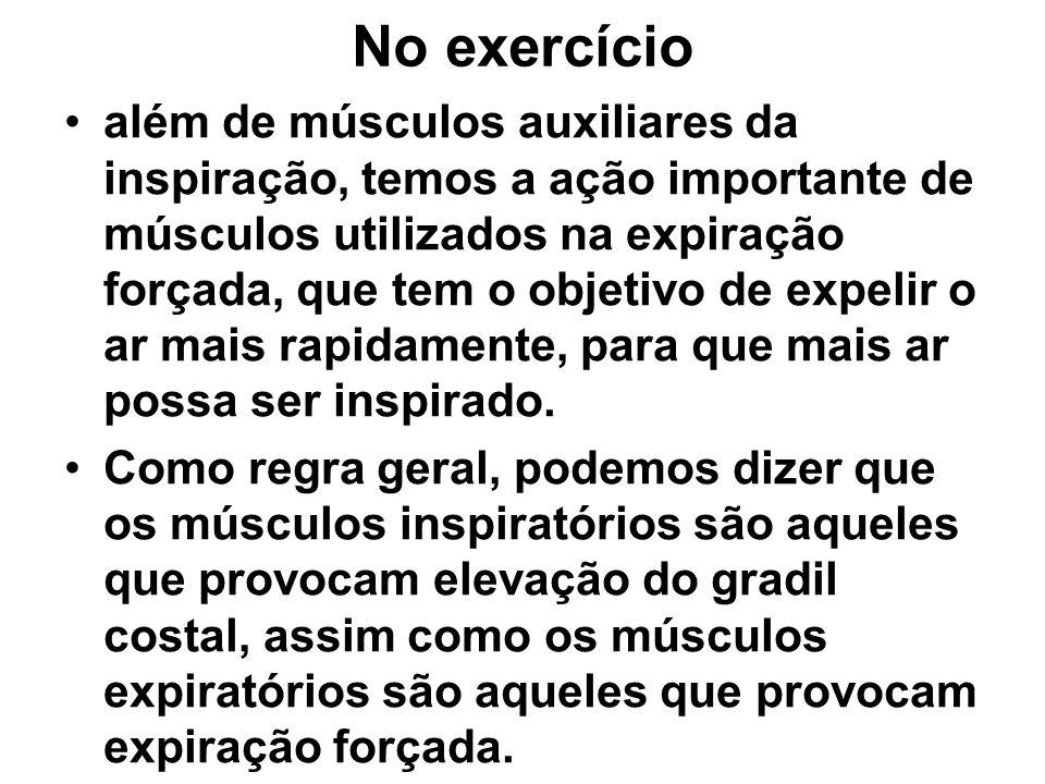 No exercício