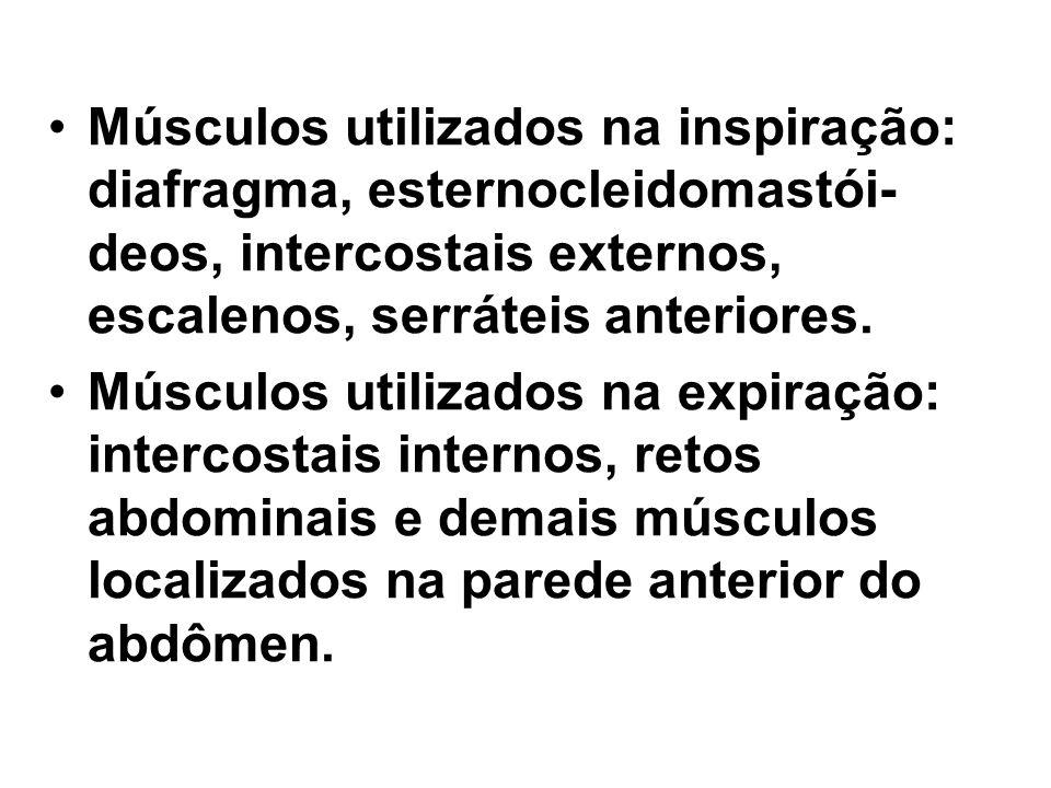Músculos utilizados na inspiração: diafragma, esternocleidomastói-deos, intercostais externos, escalenos, serráteis anteriores.