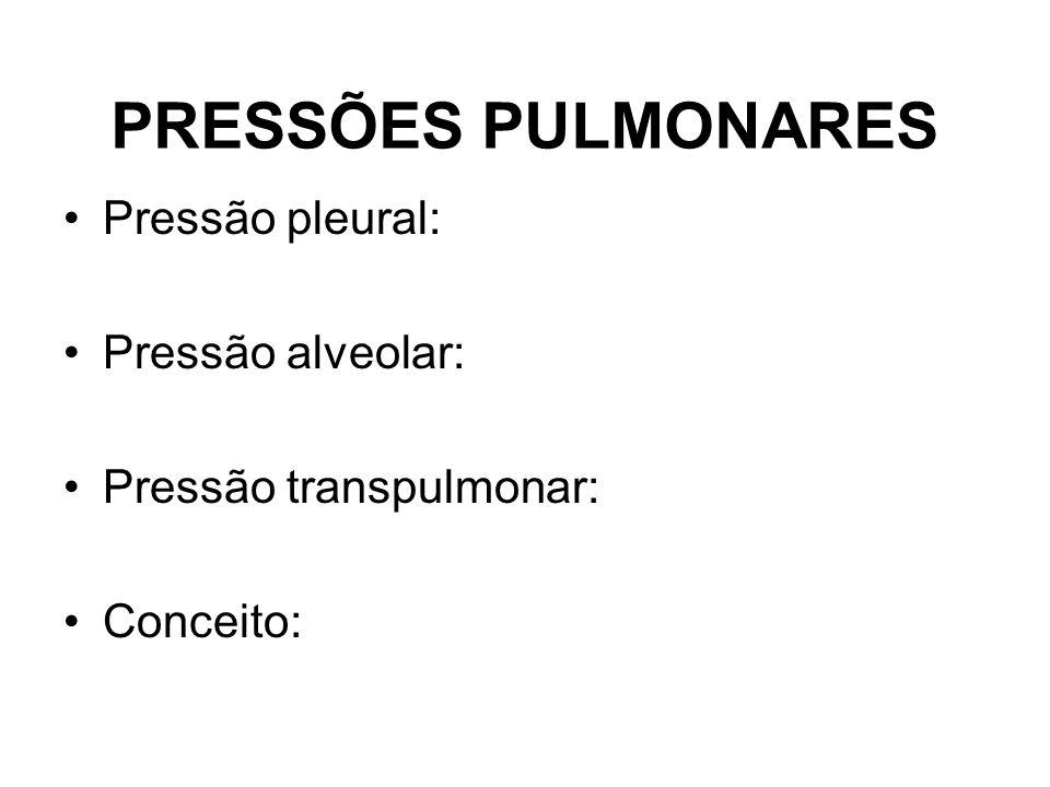 PRESSÕES PULMONARES Pressão pleural: Pressão alveolar: