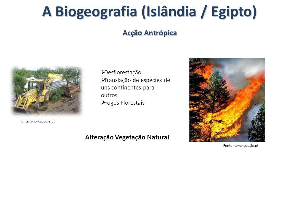 A Biogeografia (Islândia / Egipto)