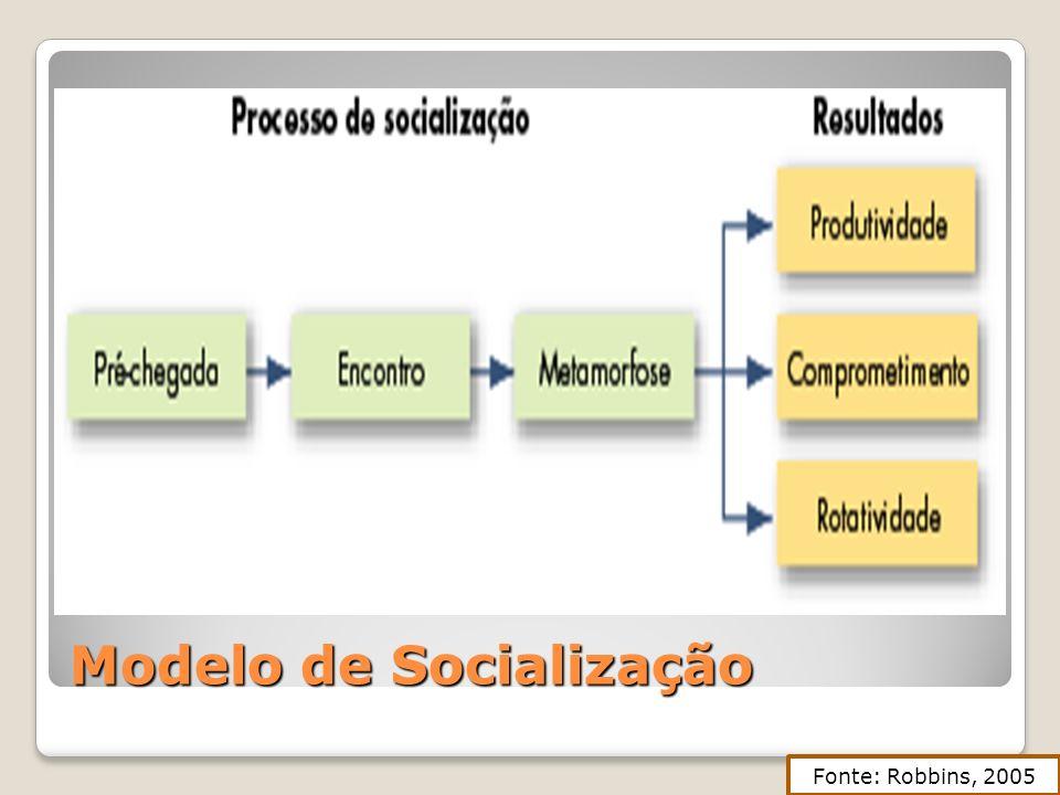 Modelo de Socialização