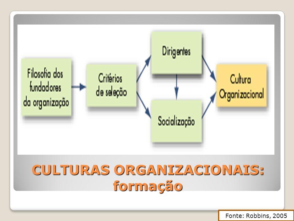 CULTURAS ORGANIZACIONAIS: formação