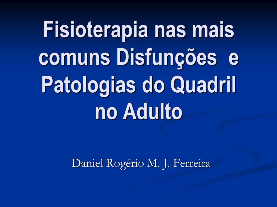 Daniel Rogério M. J. Ferreira