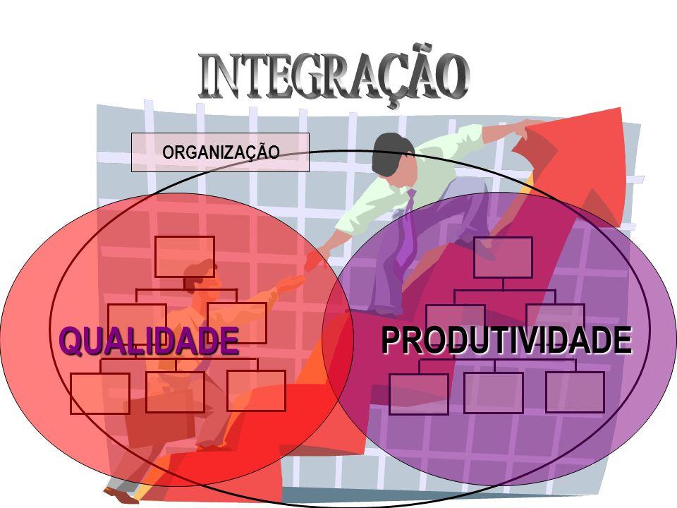 INTEGRAÇÃO ORGANIZAÇÃO QUALIDADE PRODUTIVIDADE