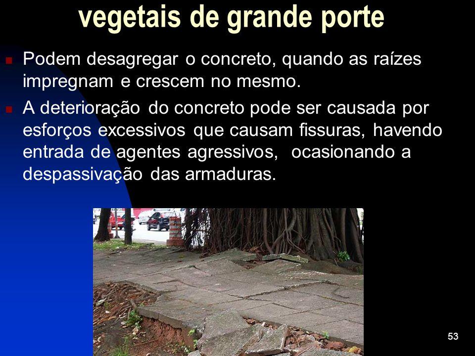vegetais de grande porte