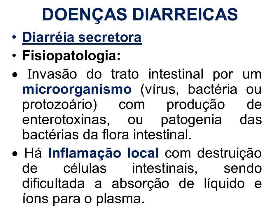 DOENÇAS DIARREICAS Diarréia secretora Fisiopatologia: