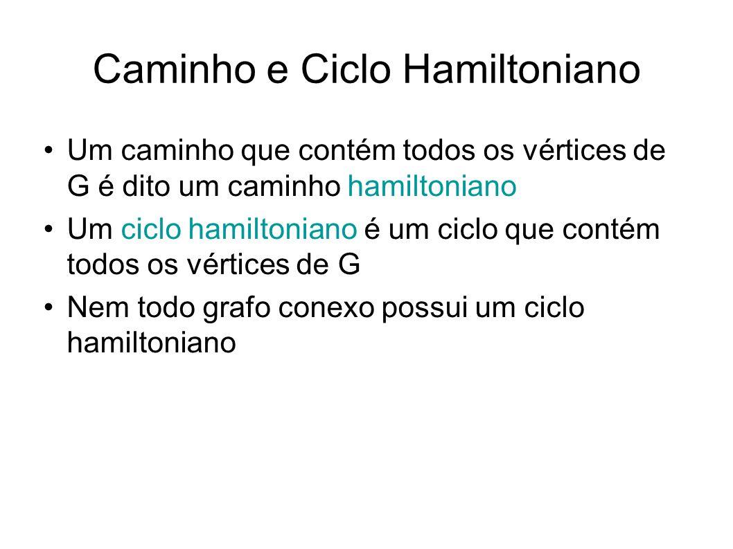 Caminho e Ciclo Hamiltoniano