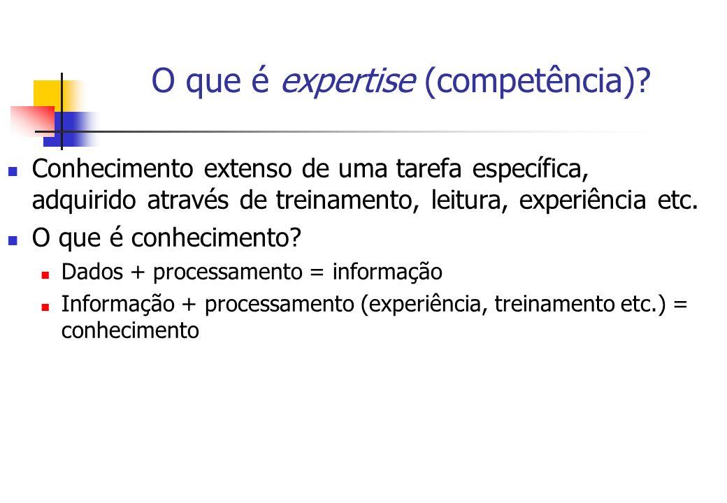 O que é expertise (competência)