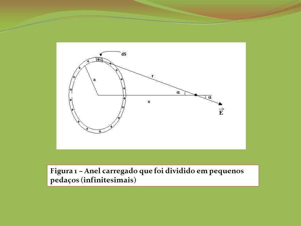 Figura 1 – Anel carregado que foi dividido em pequenos pedaços (infinitesimais)