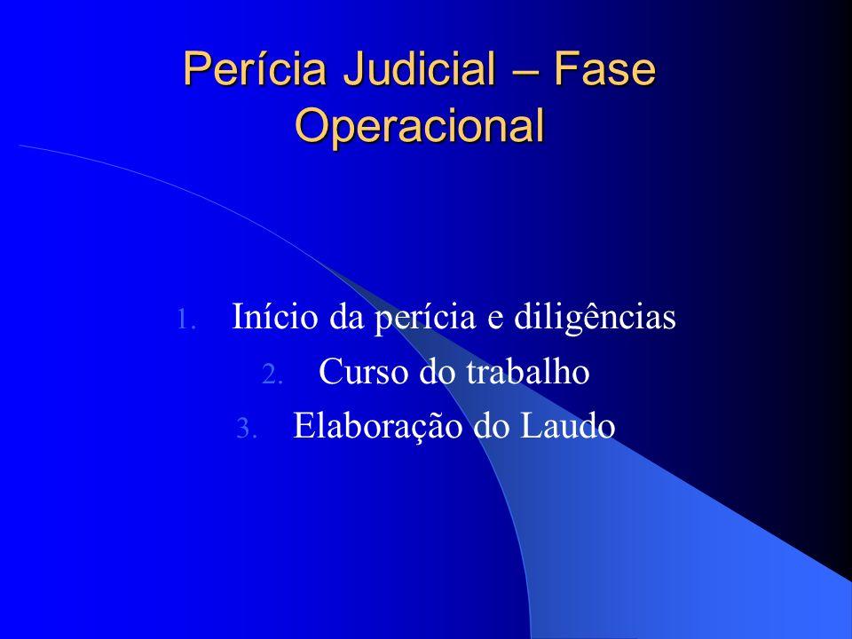 Perícia Judicial – Fase Operacional