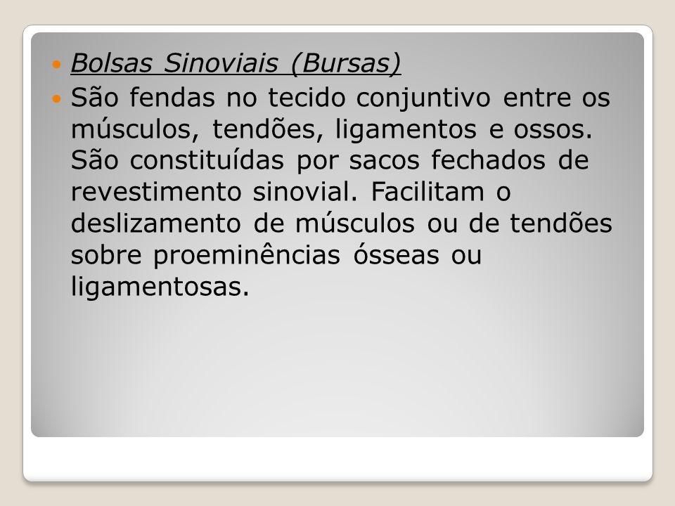 Bolsas Sinoviais (Bursas)