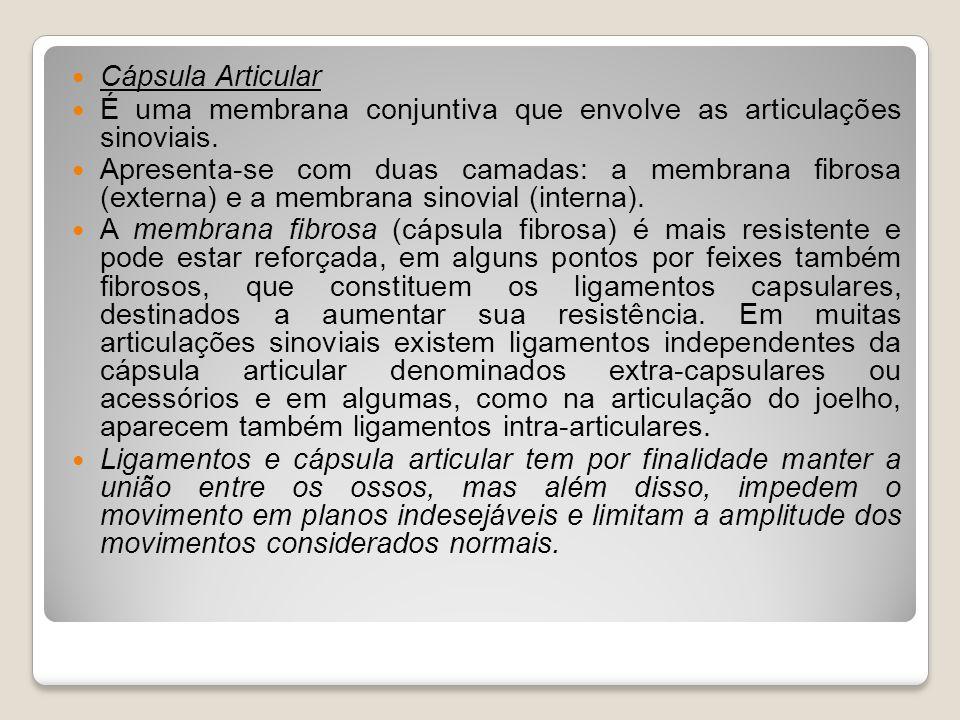 Cápsula Articular É uma membrana conjuntiva que envolve as articulações sinoviais.