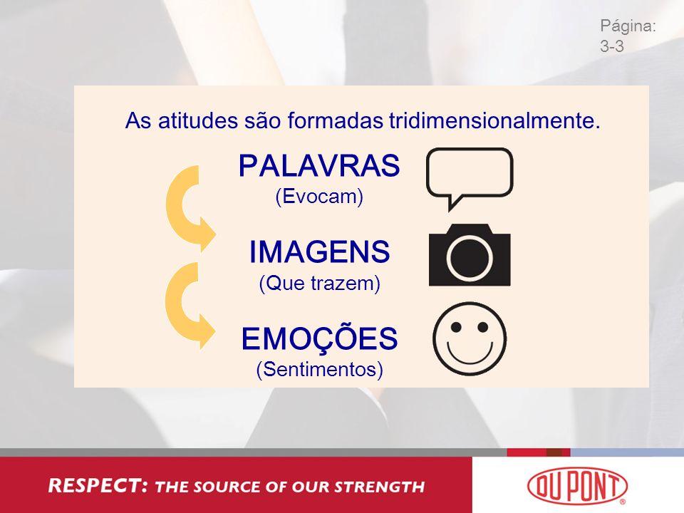 As atitudes são formadas tridimensionalmente.