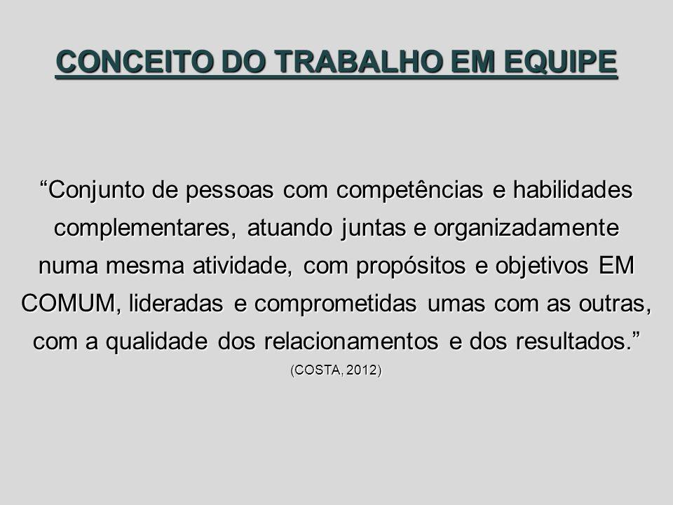 CONCEITO DO TRABALHO EM EQUIPE