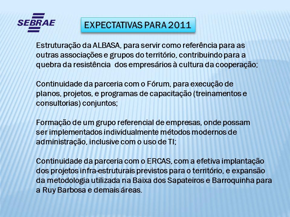 EXPECTATIVAS PARA 2011 Estruturação da ALBASA, para servir como referência para as. outras associações e grupos do território, contribuindo para a.