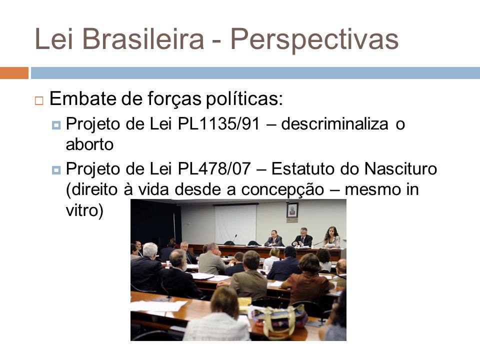 Lei Brasileira - Perspectivas