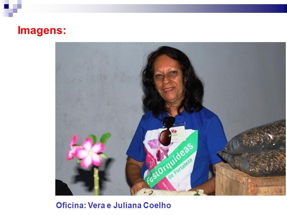 Imagens: Oficina: Vera e Juliana Coelho