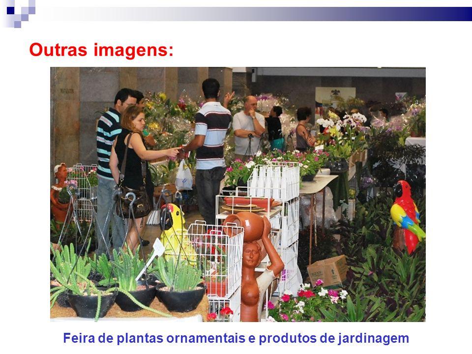 Feira de plantas ornamentais e produtos de jardinagem