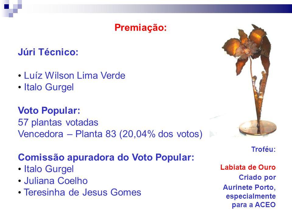Vencedora – Planta 83 (20,04% dos votos)