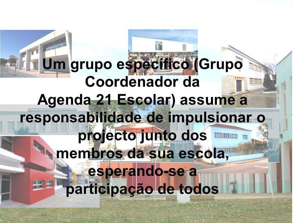 Um grupo específico (Grupo Coordenador da
