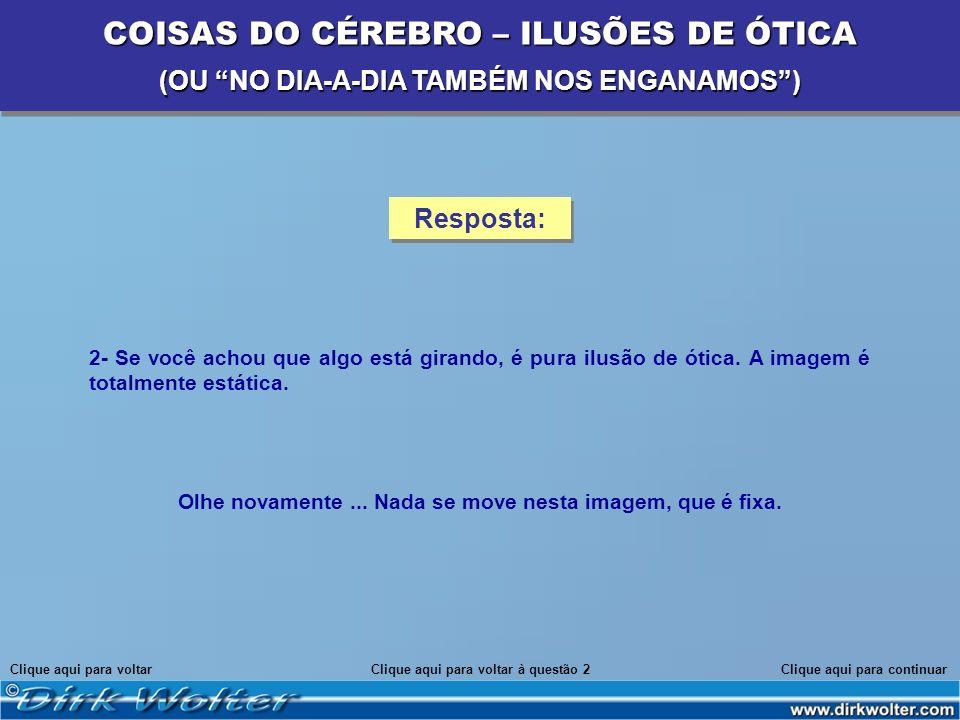 COISAS DO CÉREBRO – ILUSÕES DE ÓTICA