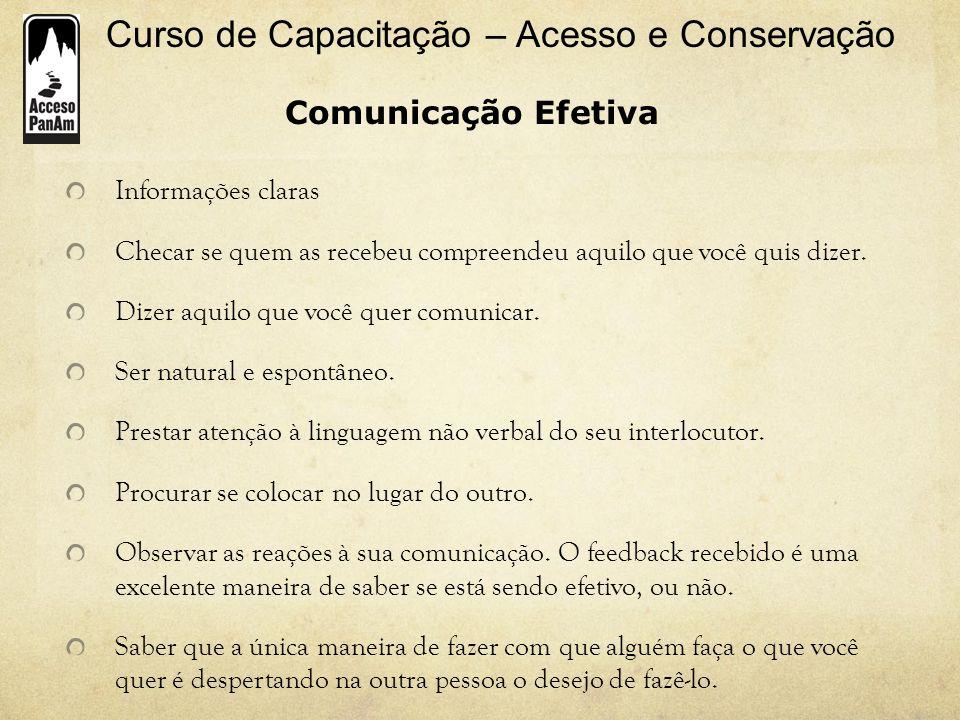 Comunicação Efetiva Informações claras