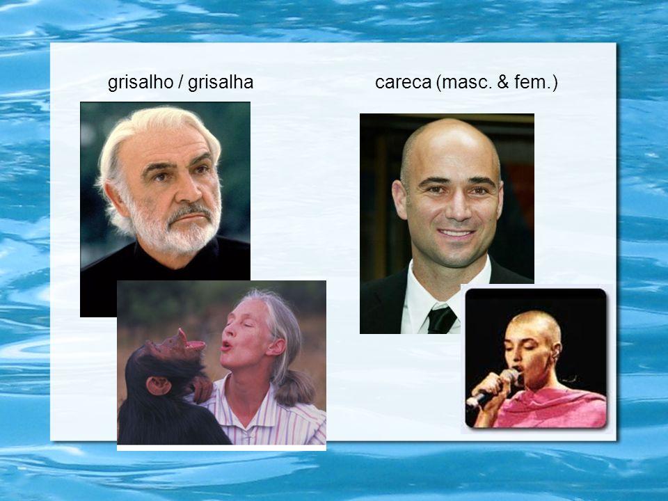 grisalho / grisalha careca (masc. & fem.)