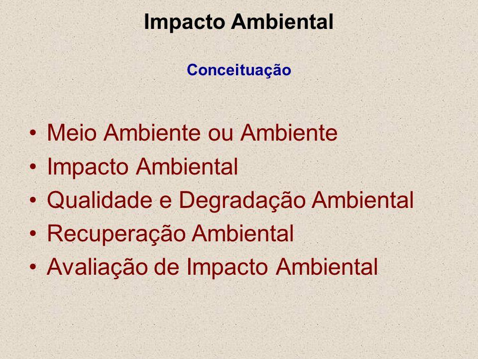 Impacto Ambiental Conceituação