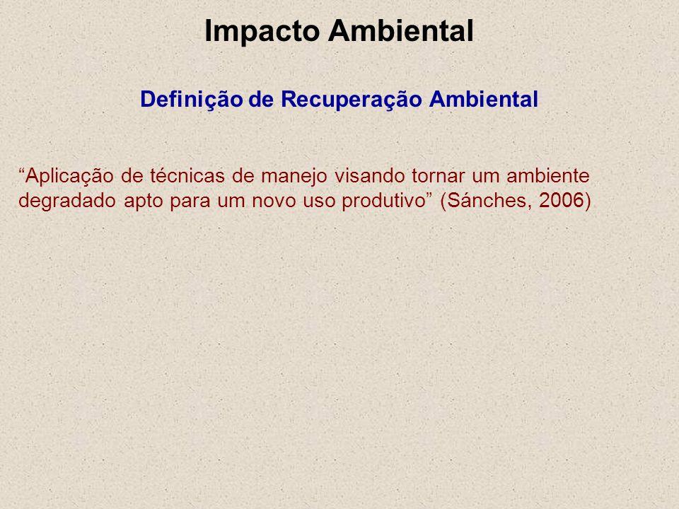 Impacto Ambiental Definição de Recuperação Ambiental