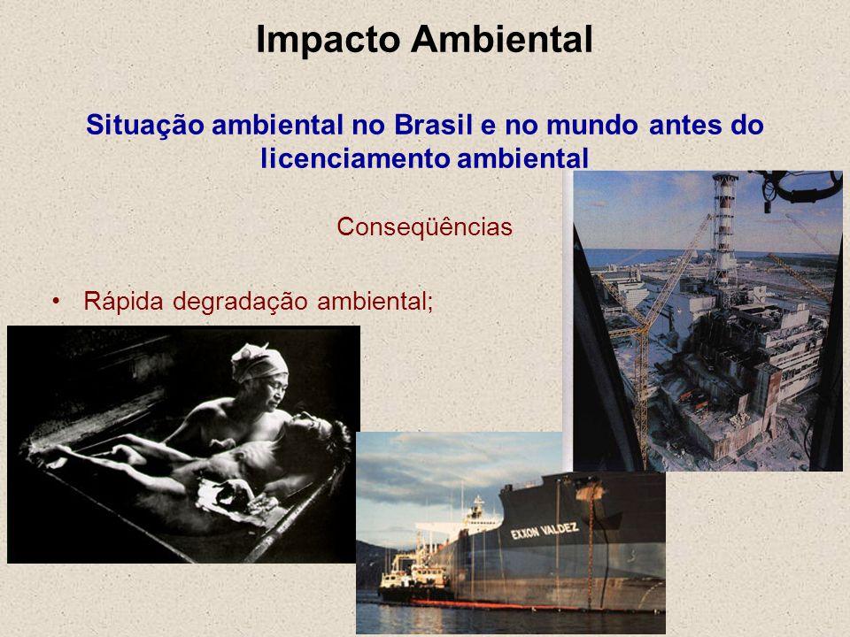 Impacto Ambiental Situação ambiental no Brasil e no mundo antes do licenciamento ambiental