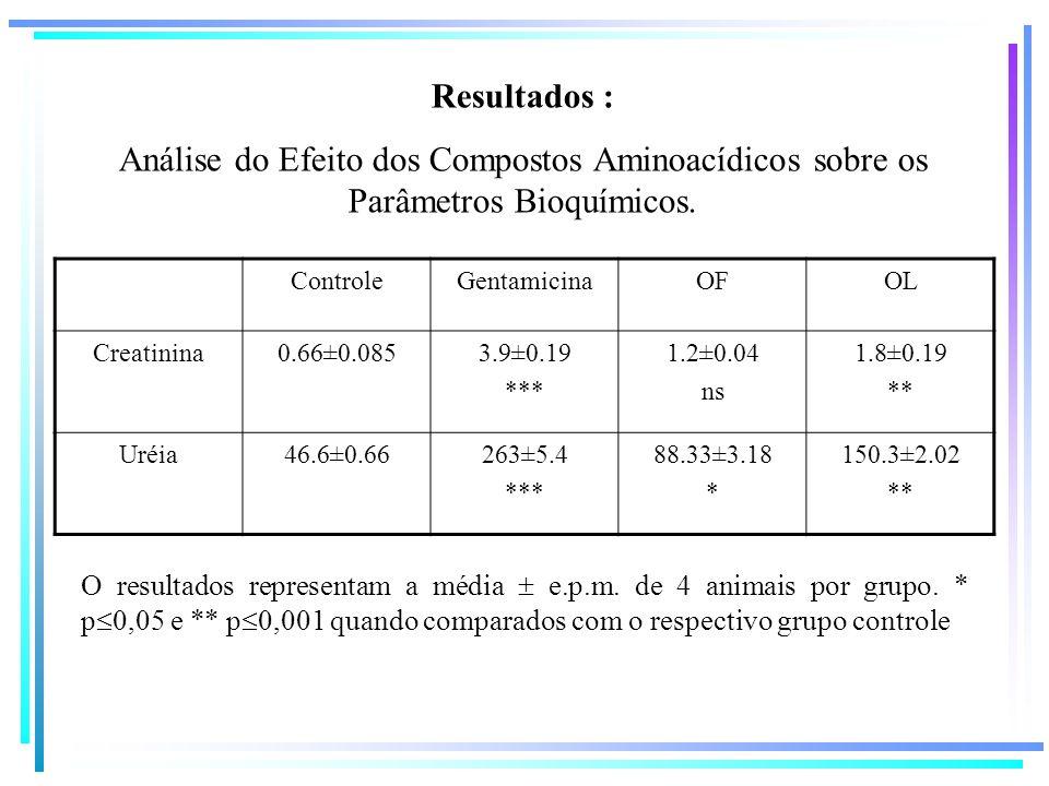 Resultados :Análise do Efeito dos Compostos Aminoacídicos sobre os Parâmetros Bioquímicos. Controle.